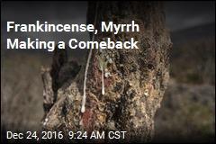 Frankincense, Myrrh Making a Comeback