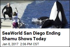 SeaWorld San Diego Bids Farewell to Shamu Shows