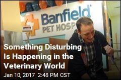 Something Disturbing Is Happening in the Veterinary World