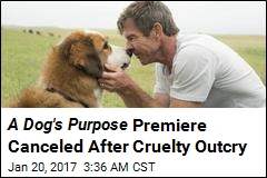 A Dog's Purpose Premiere Canceled After Cruelty Outcry