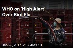 WHO on 'High Alert' Over Bird Flu