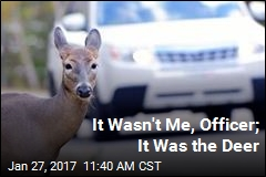 Man Blames Hypothetical Deer for Speeding Ticket