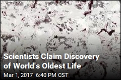 Scientists Claim Discovery of World's Oldest Life