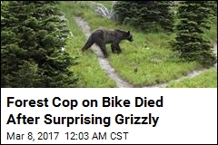 Forest Cop on Bike Killed in 'Surprise Encounter' With Bear