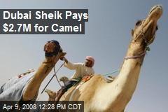 Dubai Sheik Pays $2.7M for Camel