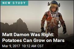 Matt Damon Was Right: Potatoes Can Grow on Mars