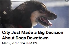 City's Downtown Bans Dogs If Owners Don't Live, Work There