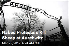 Naked Protesters Kill Sheep at Auschwitz