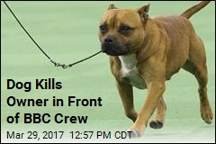 Dog Kills Owner in Front of BBC Crew