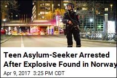 Teen Asylum-Seeker Arrested in Norway Bomb Scare