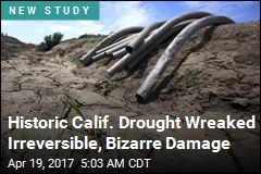 Calif. Valley Sank 3 Feet in Historic Drought