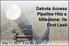 Dakota Access Pipeline Hits a Milestone: Its First Leak