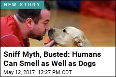 Your Sense of Smell Is Just as Good as Fido's