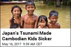 How Japan's Tsunami Rippled Into Cambodia's Salt Problem