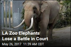 Court Overturns Order Meant to Protect LA Zoo Elephants
