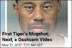 Expect Video of Tiger Woods' Arrest to Surface