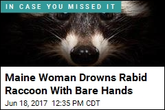 Maine Woman Drowns Rabid Raccoon With Bare Hands