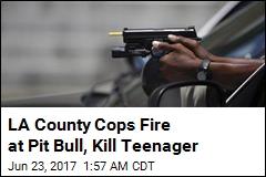LA County Cops Fire at Pit Bull, Kill Teenager
