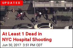 3 Doctors Shot Inside New York City Hospital
