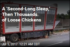 120 Firefighters Chase Chickens After Truck Crash