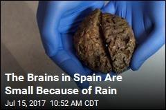 45 Shrunken, Preserved Brains Found in Mass Grave