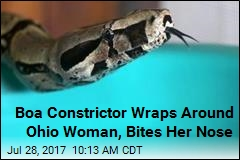 911 Call: 'I Have a Boa Constrictor Stuck to My Face'