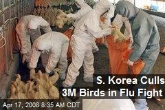 S. Korea Culls 3M Birds in Flu Fight