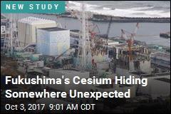 Fukushima's Cesium Hiding Somewhere Unexpected