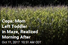 Day After Visiting Maze, Mom Realizes 3-Year-Old Is Lost