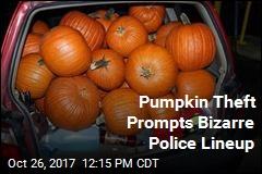 Pumpkin Theft Prompts Bizarre Police Lineup