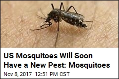 EPA OKs Use of Mosquitoes to Kill Mosquitoes
