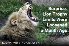 US Already Quietly Loosened Limits on Lion Trophies