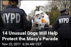 Police Go All-Out to Secure Macy's Parade