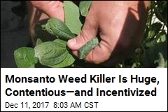 Monsanto Weed Killer Is Huge, Contentious—and Incentivized