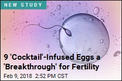 A First-Time Feat: Human Eggs Grown to Maturity in Lab