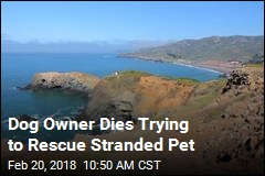Man Falls to Death Trying to Rescue His Dog