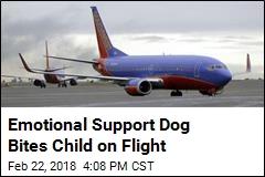 Emotional Support Dog Bites Child on Flight