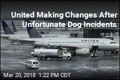 United Is Hitting Pause on Pet Cargo Flights