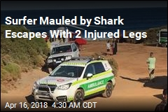 Surfer Mauled by Shark Escape With 2 Injured Legs