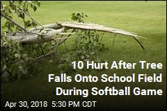 Tree Falls Onto School Field During Softball Game, Hurting 10