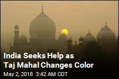 As Taj Mahal Turns Green, Government Accused of Not Caring
