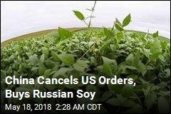 China Snaps Up Record Amount of Russian Soy