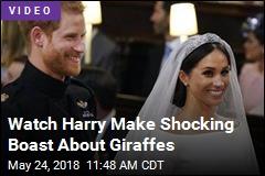 Fake Royal Wedding Dialogue Has Internet Cackling