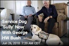 Service Dog 'Sully' Now With George HW Bush