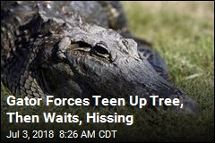 Alligator Trees a Teen, Deputy Comes to Rescue