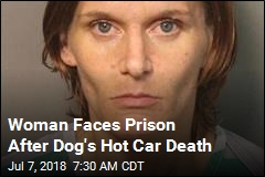 Woman Could Face Life in Prison for Dog's Hot Car Death