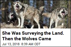 Terrifying 911 Call: I'm in a Tree Surrounded by Wolves