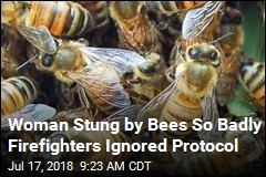 'Her Face Was Completely Covered With Bees'