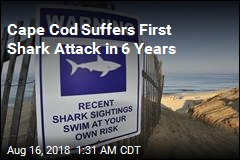 Swimmer Injured in Cape Cod Shark Attack
