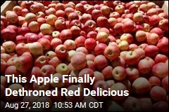 Red Delicious Is No Longer Most Popular Apple in US